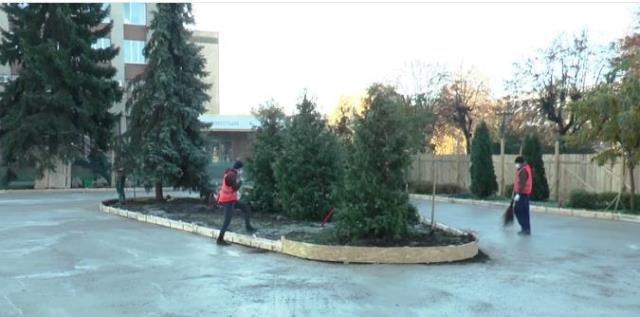 У Житомирі розпочали підготовчі роботи з будівництва скейт-парку. ВІДЕО, Ketlandia