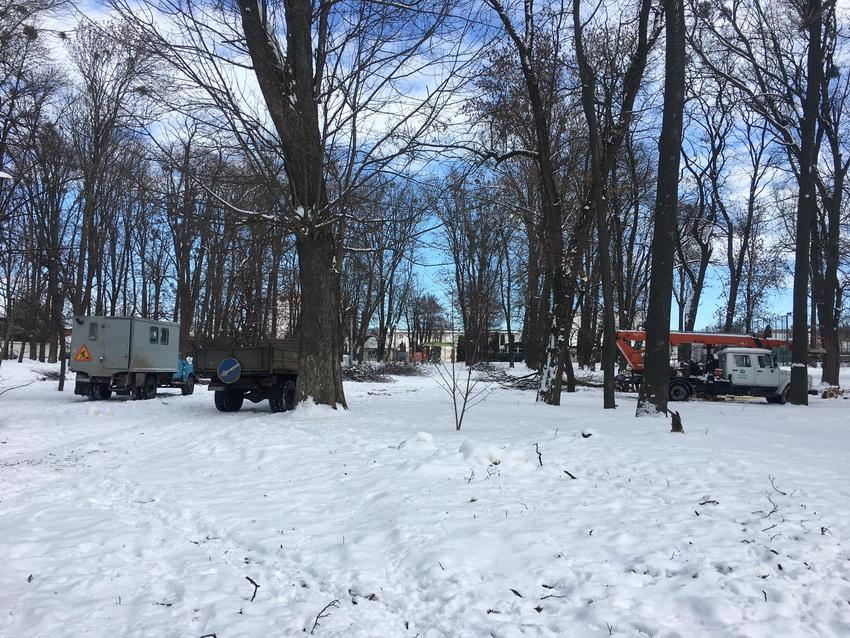 Вінниця.info | У Вінниці готуються до реконструкції парку «Хімік». Зрізають аварійні дерева